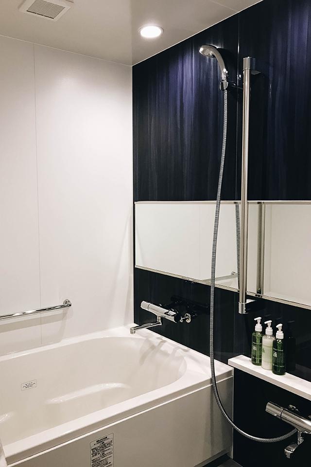 Beautiful bath and shower.