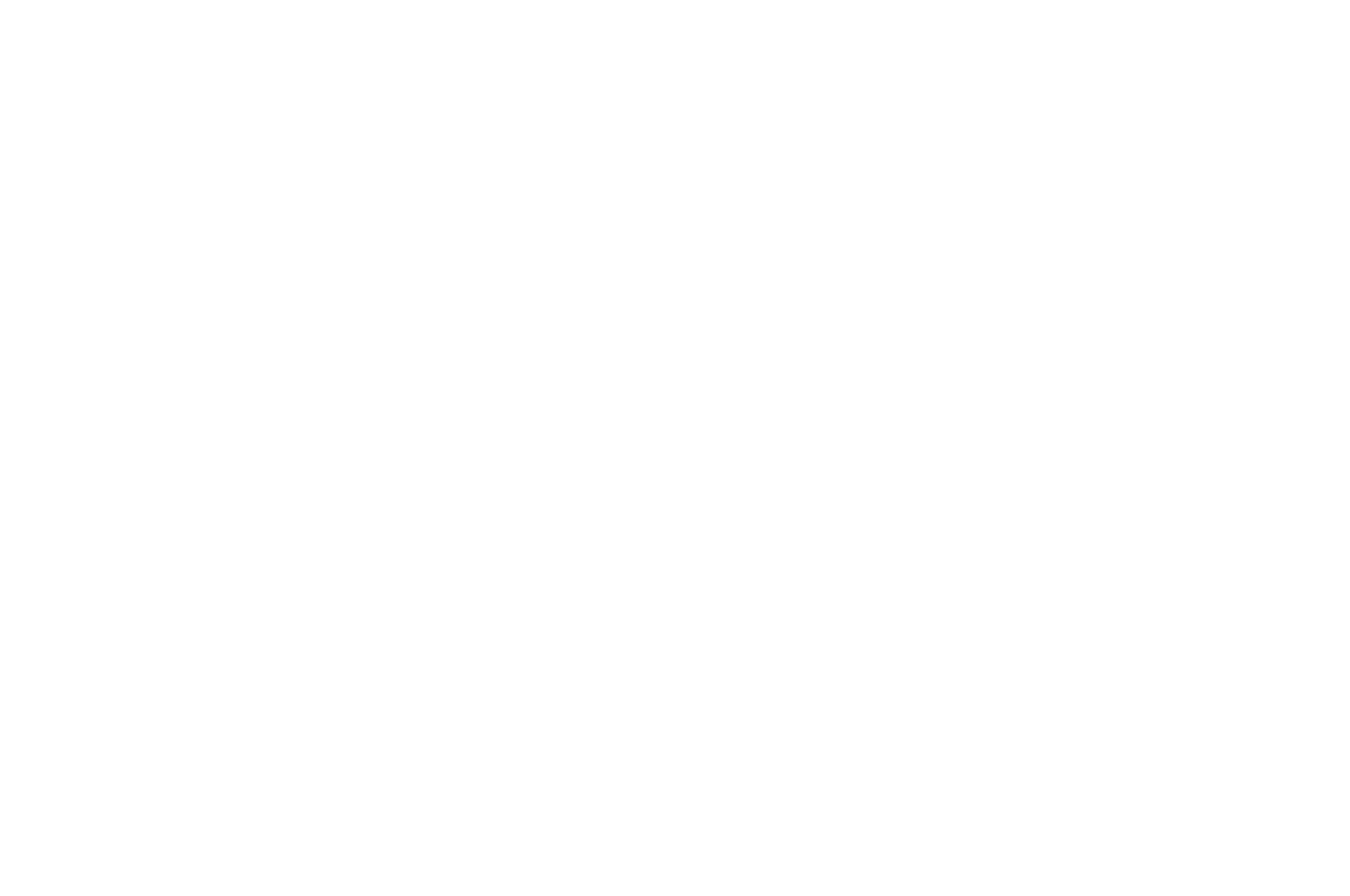 OFFICIAL SELECTION - Sunscreen Film Festival - 2019.png