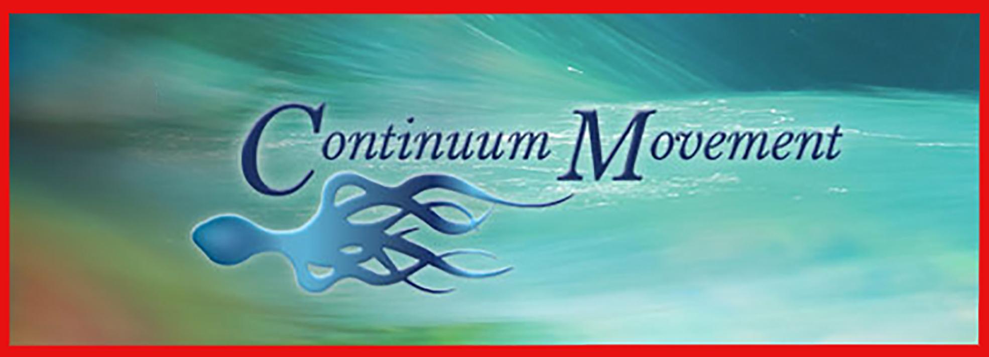 SS_Continuum-2.jpg