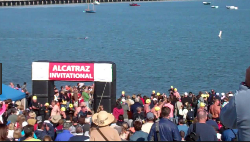 People come from around the country and the world to participate and cheer on their friends and family in this annual event in San Francisco Bay hosted by the South End Rowing Club. The open ocean access finish line is located on the beach at     Aquatic Park Cove     approx 1.3 miles from the starting point just abeam Alcatraz Island.