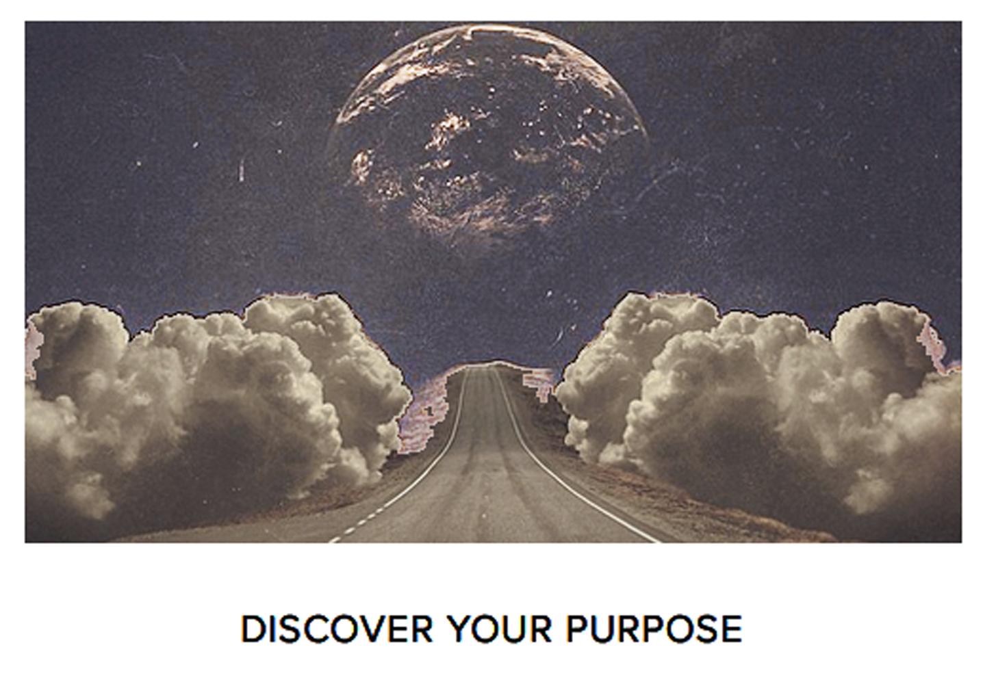 SS_Purpose.png