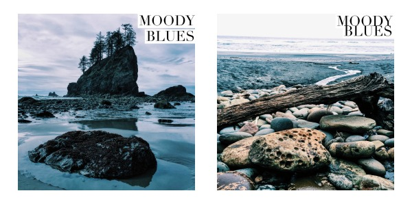 5 VSCO Presets To Up Your Social Style — Thin Pig Media