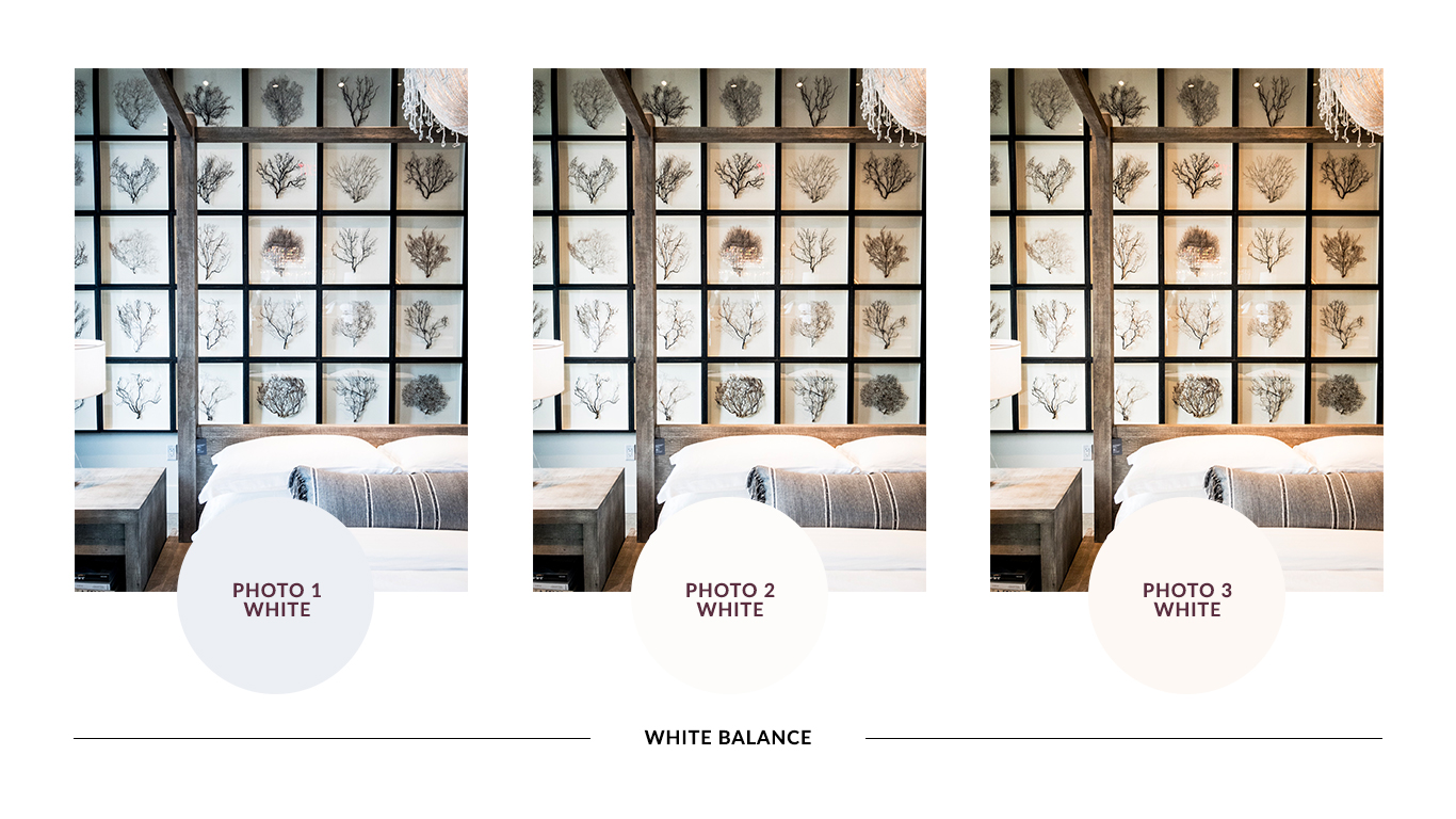 """Here is the same photo with different color temperature white balance. The circles below the photo shows what """"white"""" actually is within the photo. You can see that small changes in the temperature can affect the photo's impression while still looking great."""