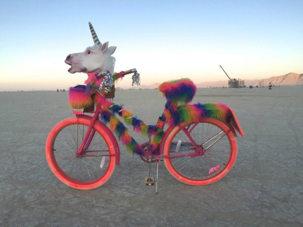 Burning Man - bike (1).jpg