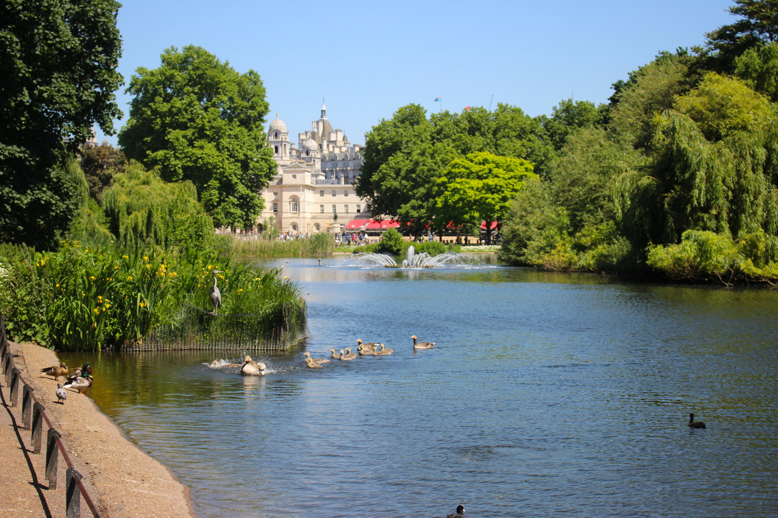 St. James's Park and Buckingham Palace