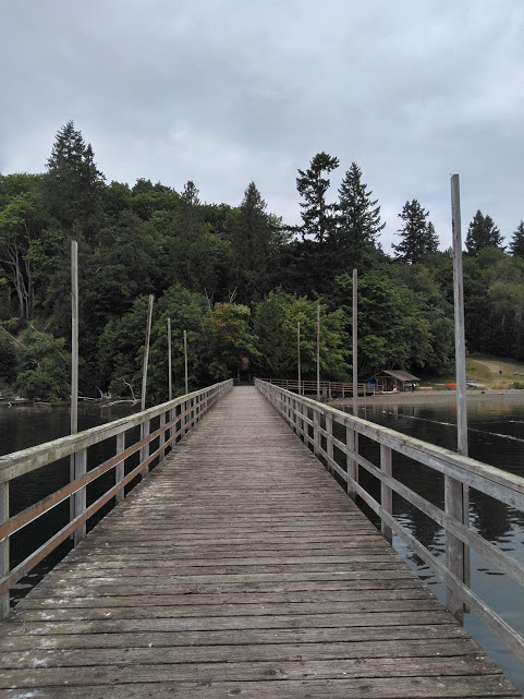 Looking back from the end of the pier. One can either go off to the right back to the paddle shed and the waterfront field - or they can venture straight up the stairs to shaded, quiet places. Sometimes, the gulls perch along the rail daring you to disturb their resting time.