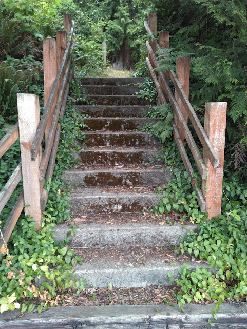 When you choose to go straight, you encounter these stairs. Every now and then, we try to control the moss and foliage growing on the steps - not too much however, they are pretty in a rugged, semi-neglected way.