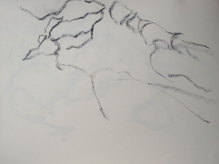 GONZALO_MARTIN-CALERO-DRAWINGS-deserts-drawings-NM-01.jpg