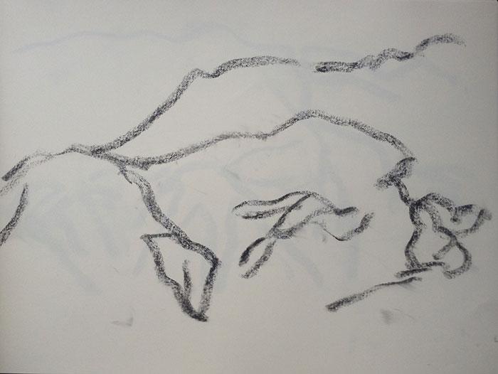 GONZALO_MARTIN-CALERO-DRAWINGS-deserts-drawings-NM-06.jpg
