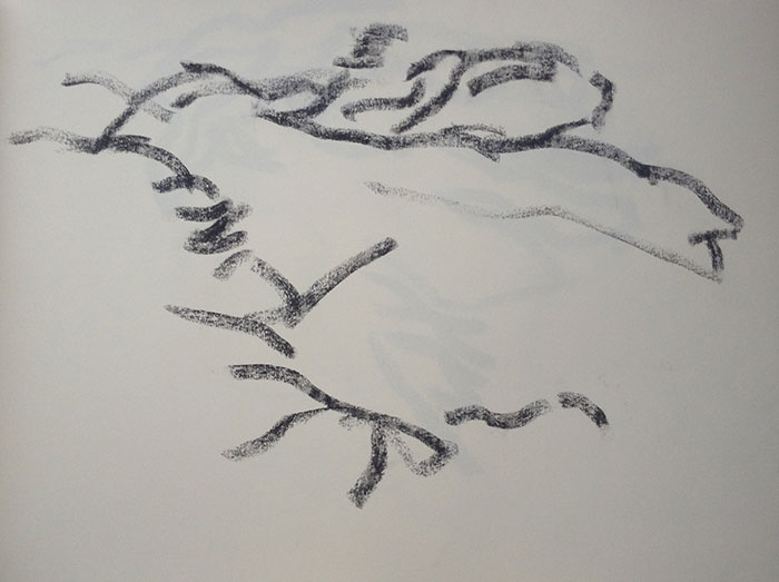GONZALO_MARTIN-CALERO-DRAWINGS-deserts-drawings-NM-10.jpg