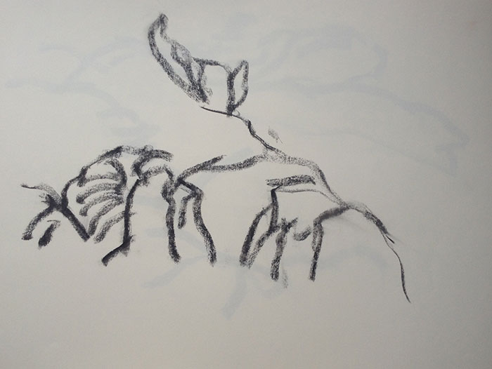 GONZALO_MARTIN-CALERO-DRAWINGS-deserts-drawings-NM-11.jpg