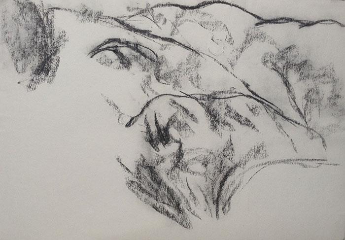 GONZALO_MARTIN-CALERO-DRAWINGS-deserts-drawings-NM-17.jpg