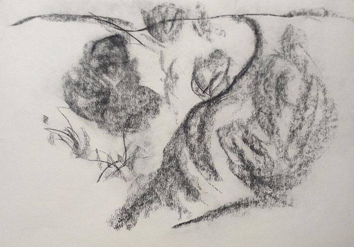GONZALO_MARTIN-CALERO-DRAWINGS-deserts-drawings-NM-18.jpg