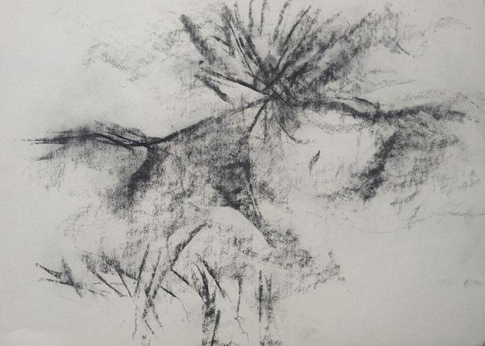 GONZALO_MARTIN-CALERO-DRAWINGS-deserts-drawings-NM-22.jpg