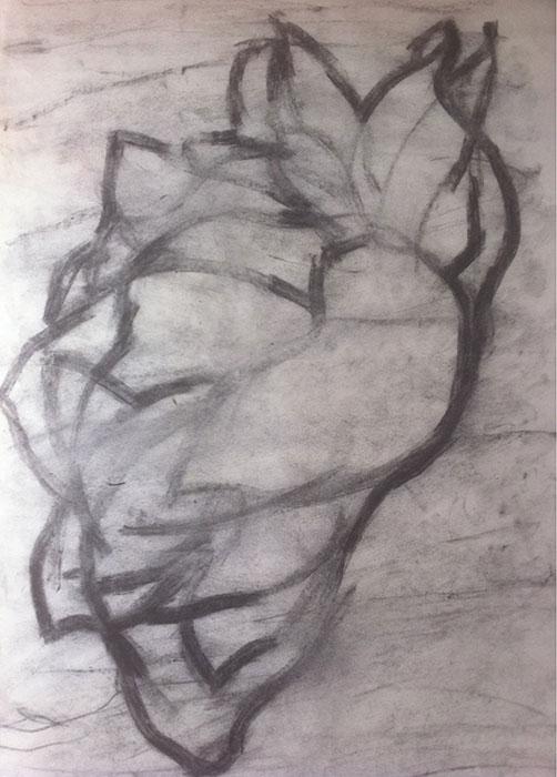 GONZALO_MARTIN-CALERO-DRAWINGS-flower-drawings-01.jpg