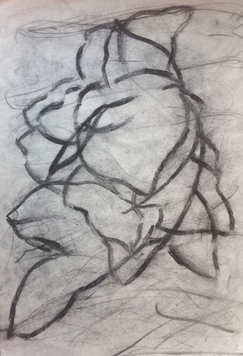 GONZALO_MARTIN-CALERO-DRAWINGS-flower-drawings-02.jpg