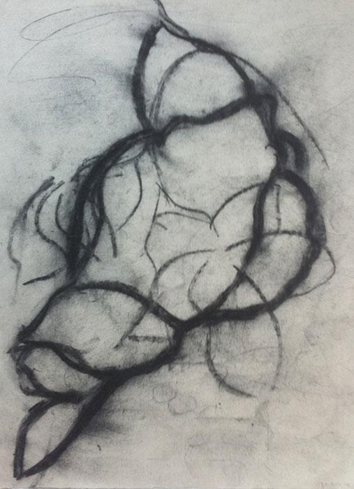 GONZALO_MARTIN-CALERO-DRAWINGS-flower-drawings-07.jpg