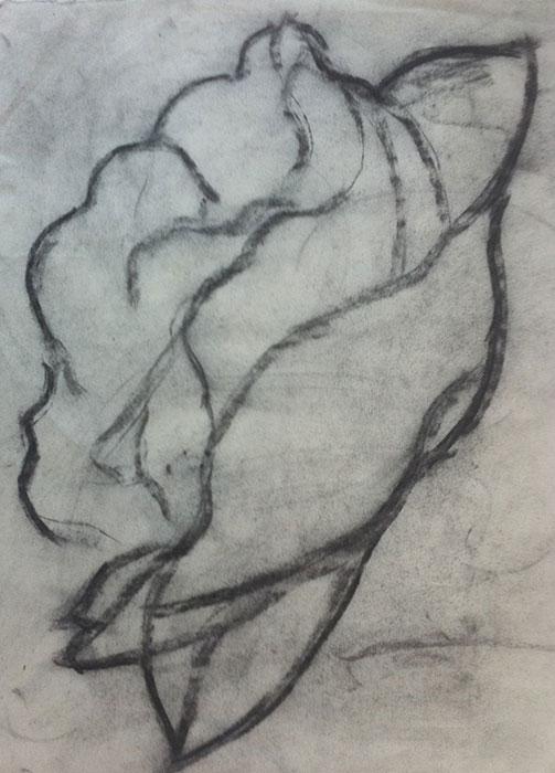 GONZALO_MARTIN-CALERO-DRAWINGS-flower-drawings-08.jpg
