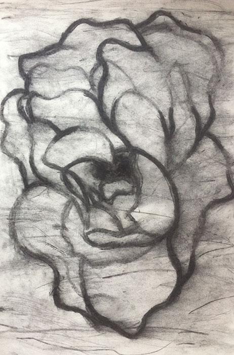 GONZALO_MARTIN-CALERO-DRAWINGS-flower-drawings-09.jpg