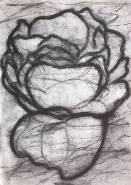 GONZALO_MARTIN-CALERO-DRAWINGS-flower-drawings-11.jpg