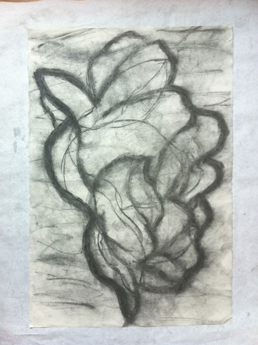GONZALO_MARTIN-CALERO-DRAWINGS-flower-drawings-13.jpg