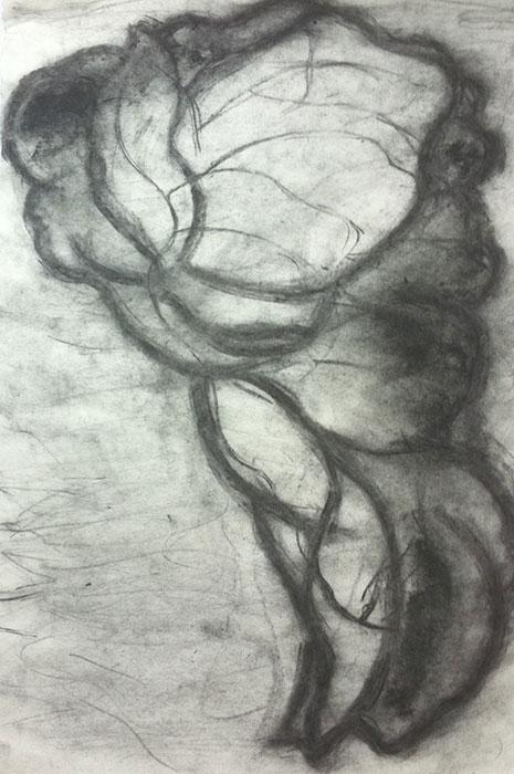 GONZALO_MARTIN-CALERO-DRAWINGS-flower-drawings-14.jpg