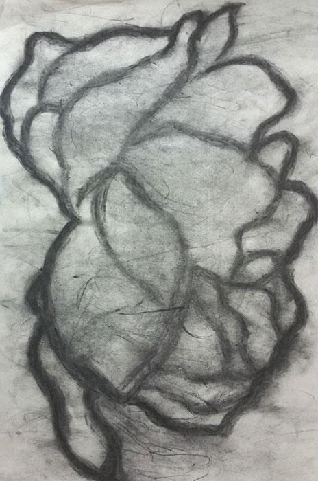 GONZALO_MARTIN-CALERO-DRAWINGS-flower-drawings-15.jpg