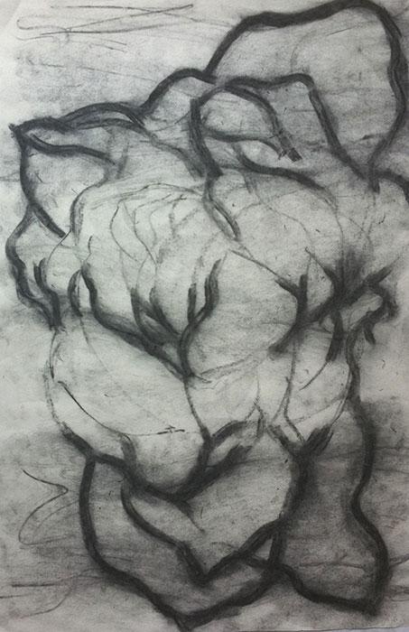 GONZALO_MARTIN-CALERO-DRAWINGS-flower-drawings-16.jpg