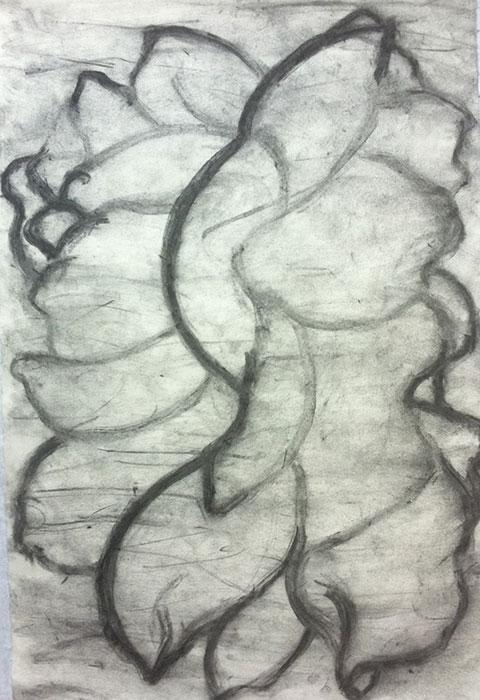 GONZALO_MARTIN-CALERO-DRAWINGS-flower-drawings-21.jpg