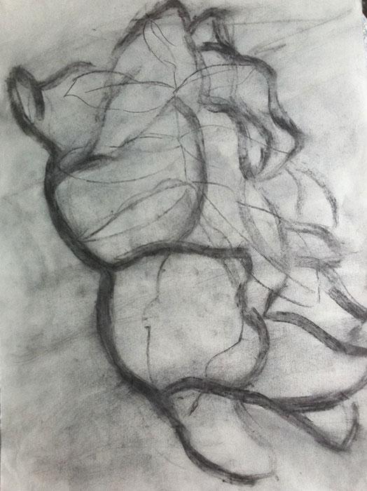 GONZALO_MARTIN-CALERO-DRAWINGS-flower-drawings-22.jpg