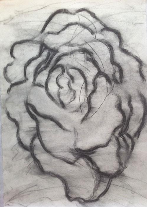 GONZALO_MARTIN-CALERO-DRAWINGS-flower-drawings-26.jpg