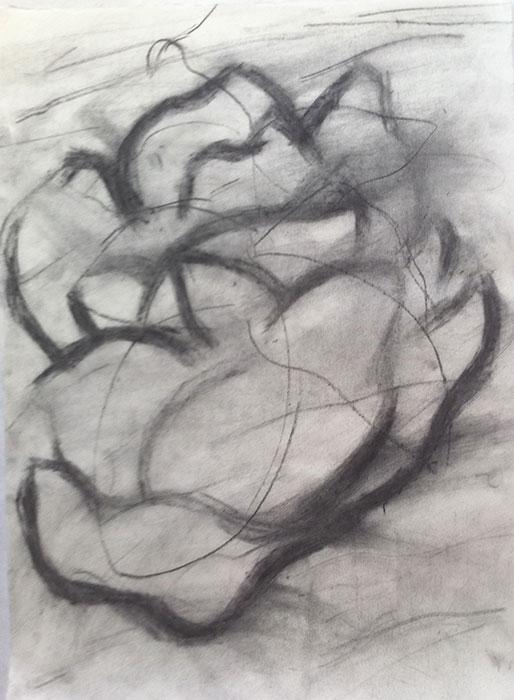 GONZALO_MARTIN-CALERO-DRAWINGS-flower-drawings-27.jpg