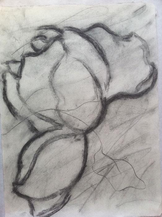 GONZALO_MARTIN-CALERO-DRAWINGS-flower-drawings-28.jpg