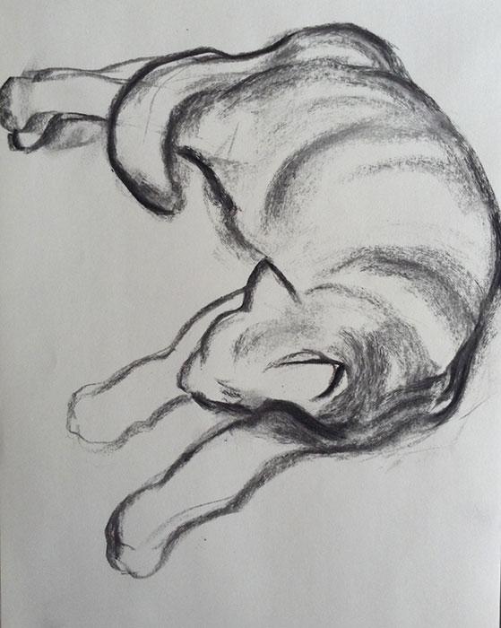GONZALO_MARTIN-CALERO-DRAWINGS-cat-drawings-02.jpg