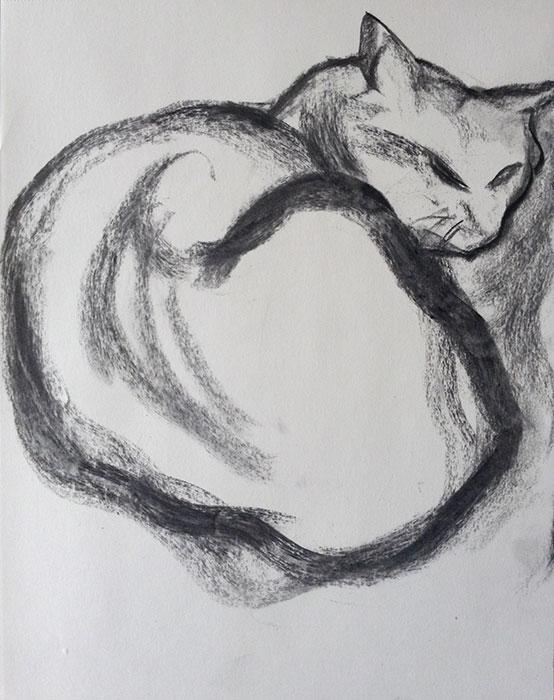 GONZALO_MARTIN-CALERO-DRAWINGS-cat-drawings-01.jpg
