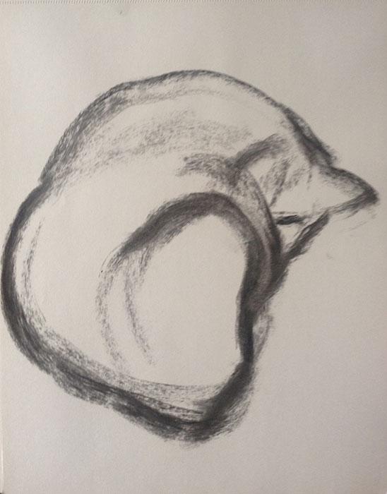 GONZALO_MARTIN-CALERO-DRAWINGS-cat-drawings-03.jpg