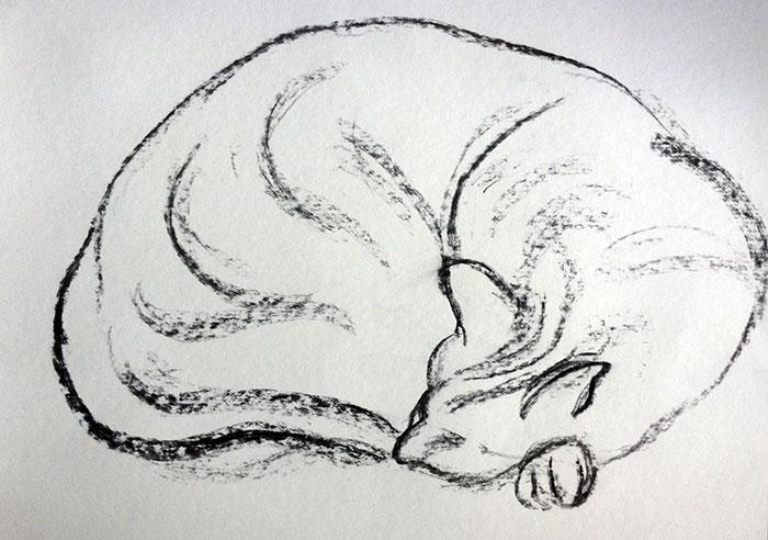 GONZALO_MARTIN-CALERO-DRAWINGS-cat-drawings-04.jpg