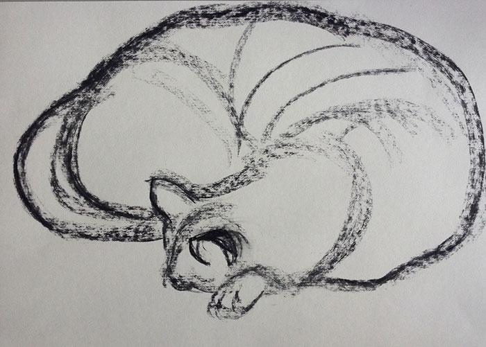 GONZALO_MARTIN-CALERO-DRAWINGS-cat-drawings-05.jpg