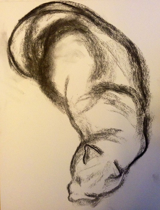 GONZALO_MARTIN-CALERO-DRAWINGS-cat-drawings-07.jpg
