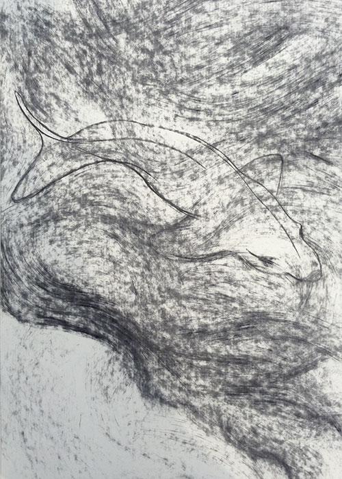 GONZALO_MARTIN-CALERO-DRAWINGS-fish-drawings-001.jpg