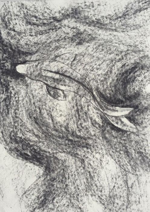 GONZALO_MARTIN-CALERO-DRAWINGS-fish-drawings-004.jpg