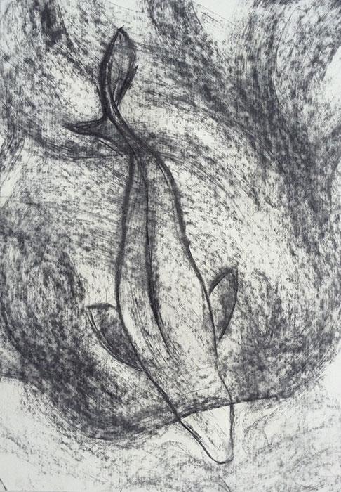 GONZALO_MARTIN-CALERO-DRAWINGS-fish-drawings-007.jpg