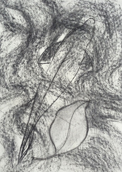 GONZALO_MARTIN-CALERO-DRAWINGS-fish-drawings-010.jpg