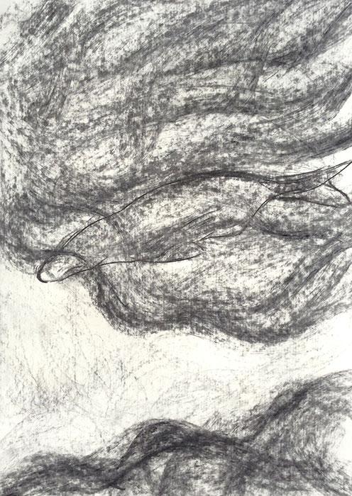 GONZALO_MARTIN-CALERO-DRAWINGS-fish-drawings-011.jpg