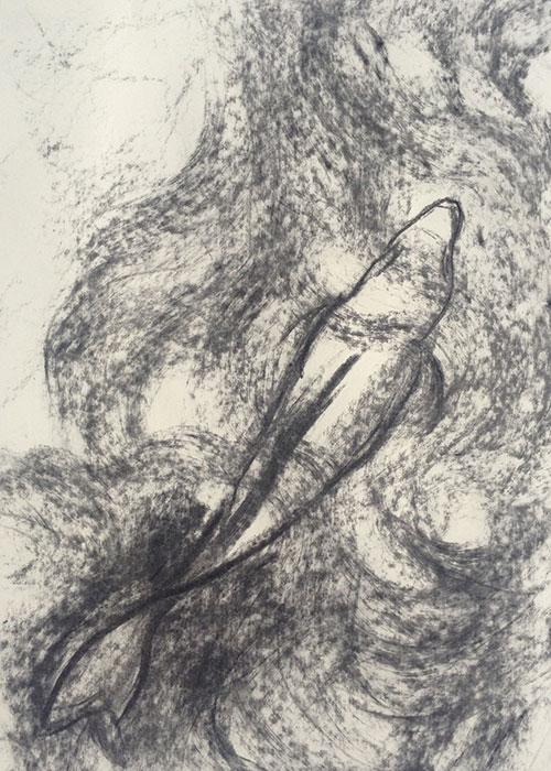 GONZALO_MARTIN-CALERO-DRAWINGS-fish-drawings-014.jpg