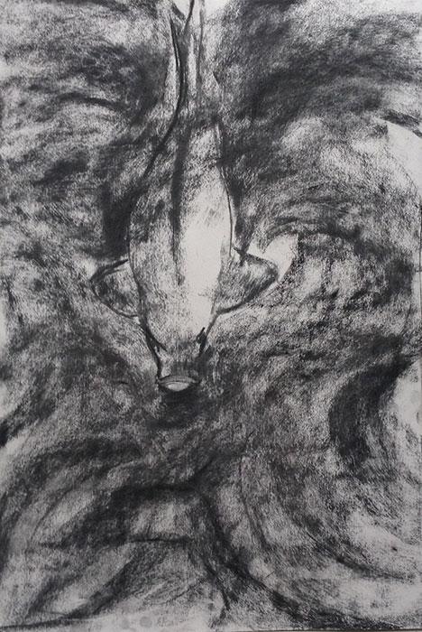 GONZALO_MARTIN-CALERO-DRAWINGS-fish-drawings-024.jpg