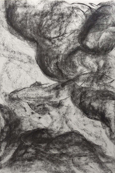 GONZALO_MARTIN-CALERO-DRAWINGS-fish-drawings-025.jpg