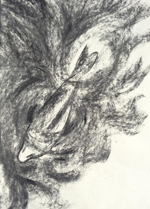 GONZALO_MARTIN-CALERO-DRAWINGS-fish-drawings-027.jpg