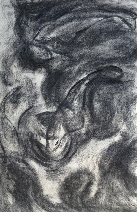 GONZALO_MARTIN-CALERO-DRAWINGS-fish-drawings-031.jpg