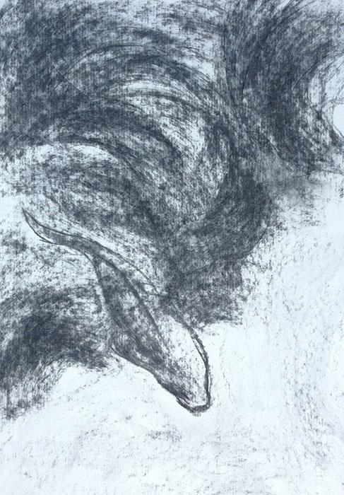 GONZALO_MARTIN-CALERO-DRAWINGS-fish-drawings-033.jpg